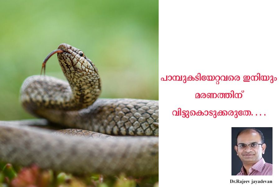 How to Treat a Snake Bite by Dr.Rajeev jayadevan